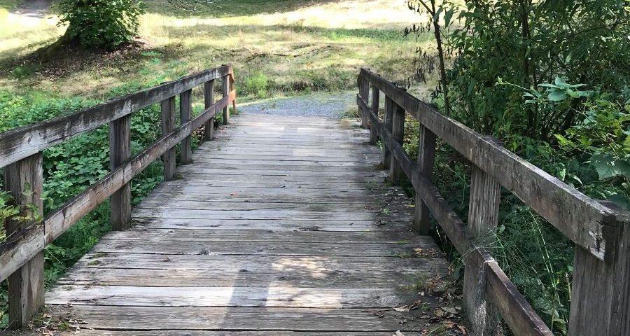 A wooden trail bridge through a park.
